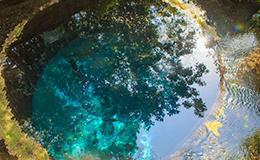 美しい湧き水